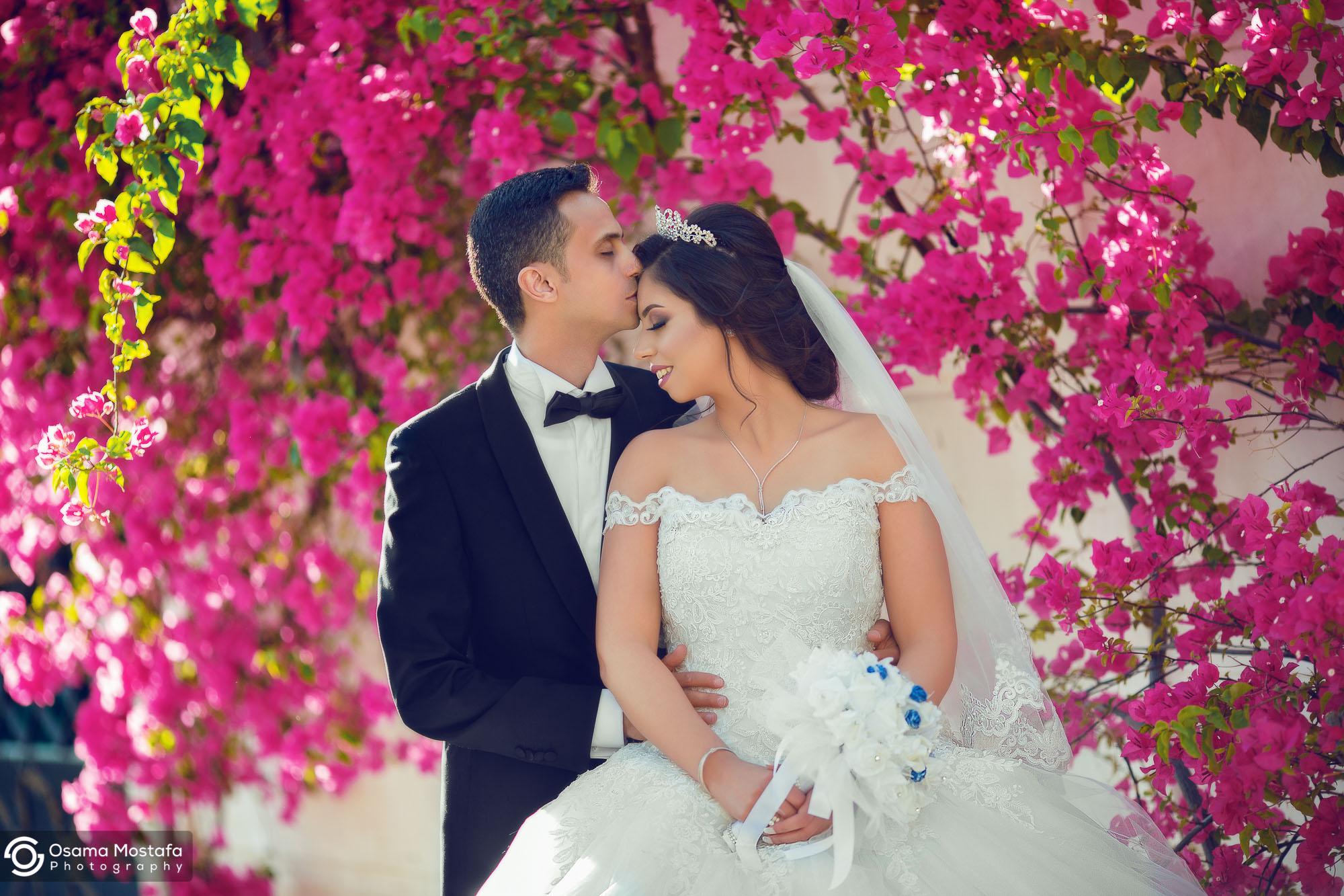 Aliaa & Mostafa